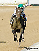 Awesome Mama running in The Sweet and Sassy Stakes at Delaware Park on 7/12/14