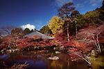Daikodo hall with a pond at Daigo-ji temple, Shimo-Daigo part of Daigoji complex in colorful autumn nature scenery. Shingon Buddhist temple in Fushimi-ku, Kyoto, Japan 2017.