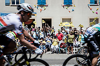 Daryl Impey (ZAF/Mitchelton Scott) and peloton cheered on by the excited roadside fans<br />  <br /> Stage 5: Saint-Dié-des-Vosges to Colmar (175km)<br /> 106th Tour de France 2019 (2.UWT)<br /> <br /> ©kramon