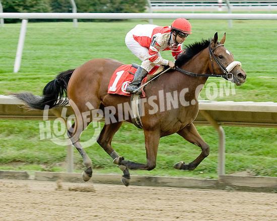 Havre de Grace winning at Delaware Park on 9/30/09