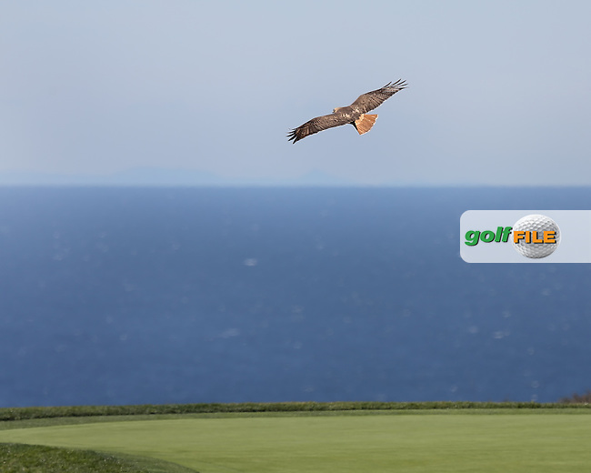 28 JAN 13  High Flight during Mondays Final Round at The Farmers Insurance Open at Torrey Pines Golf Course in La Jolla, California. (photo:  kenneth e.dennis / kendennisphoto.com)