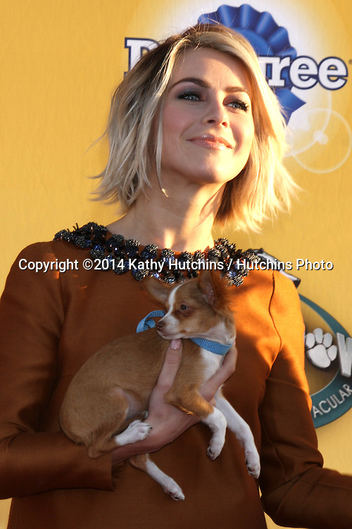 """LOS ANGELES - NOV 22:  Julianne Hough at the FOX's """"Cause for Paws:  All-Star Dog Spectacular"""" at the Barker Hanger on November 22, 2014 in Santa Monica, CA"""