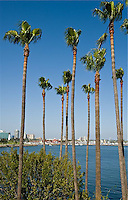 CDT- Hotel Maya - a Double Tree by Hilton, Exterior, Long Beach CA 5 12