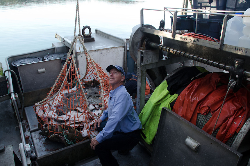 Duke Inspects the Halibut Catch, Kodiak Island, Alaska, May 2013