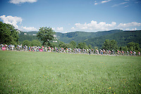 peloton over the 1st categorized climb of the day: Le C&ocirc;te de Rogna (7.6km/4.9%) in the Jura region<br /> <br /> 2014 Tour de France<br /> stage 11: Besan&ccedil;on - Oyonnax (187km)