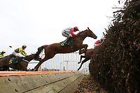Race winner Theres No Panic ridden by Ruby Walsh (red cap) in jumping action during the Gary Peters Novices Chase