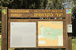 Israel, Martyrs forest in Jerusalem mountains