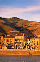 The river water front with houses and plane platane trees. A sign with M Chapoutier. The Hermitage vineyards on the hill behind the city Tain-l'Hermitage, on the steep sloping hill, stone terraced. Sometimes spelled Ermitage. Tain l'Hermitage, Drome, Drôme, France, Europe