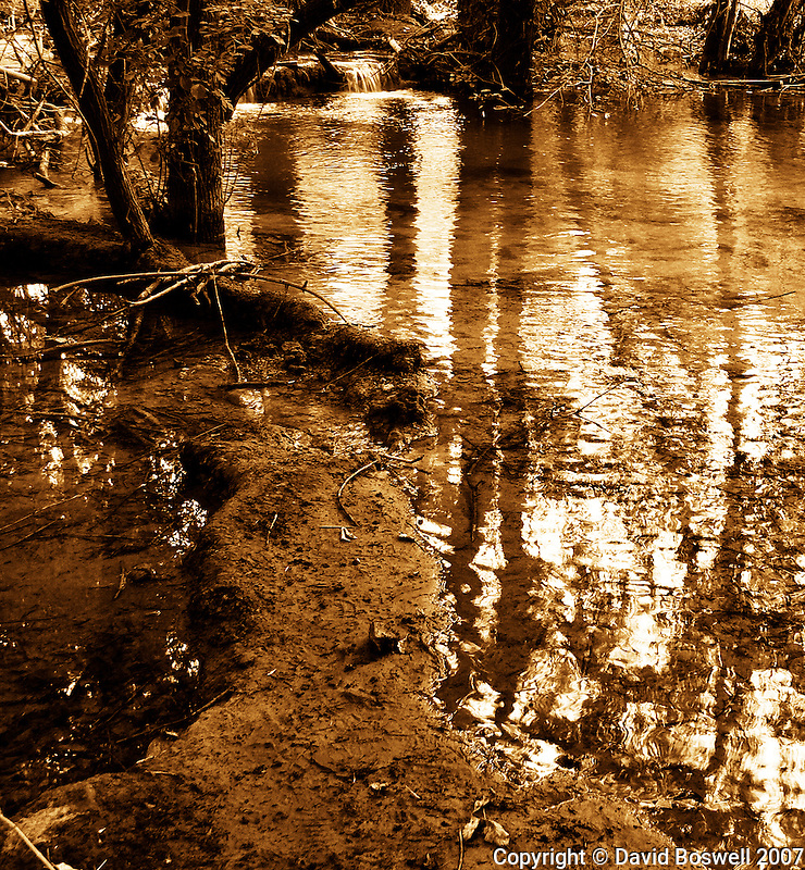 Havasu Creek in Havasu Canyon, Arizona shown in a duotone of sepia and gold.