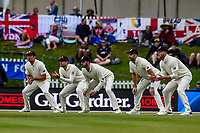 Alastair Cook, Dawid Malan,  James Vince, James Anderson  and Ben Stokes of England during Day 4 of the Second International Cricket Test match, New Zealand V England, Hagley Oval, Christchurch, New Zealand, 2nd April 2018.Copyright photo: John Davidson / www.photosport.nz
