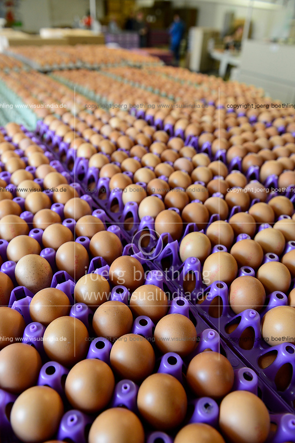 GERMANY, chicken farm and egg production / DEUTSCHLAND, Legehennenbetrieb Brunnenhof, Eierproduktion, Sortierung und Verpackung