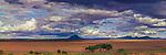 Serengeti Plain, Tarangire National Park, Tanzania