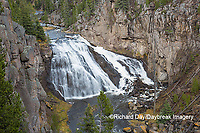 67545-09713 Gibbon Falls at Yellowstone National Park, WY