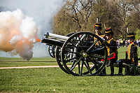 21.04.2015 - 41-Gun Salute for HM the Queen's Birthday