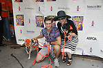 """Aaron Tveit and Linda Hart star in Catch Me If You Can attend Broadway Barks Lucky 13th Annual Adopt-a-thon - A """"Pawpular"""" Star-studded dog and cat adopt-a-thon on July 9, 2011 in Shubert Alley, New York City, New York with Bernadette Peters and Mary Tyler Moore as hosts.  (Photo by Sue Coflin/Max Photos)"""