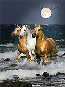 Bob, ANIMALS, collage, photos, 3 horses, sea(GBLA571,#A#) Pferde, caballos