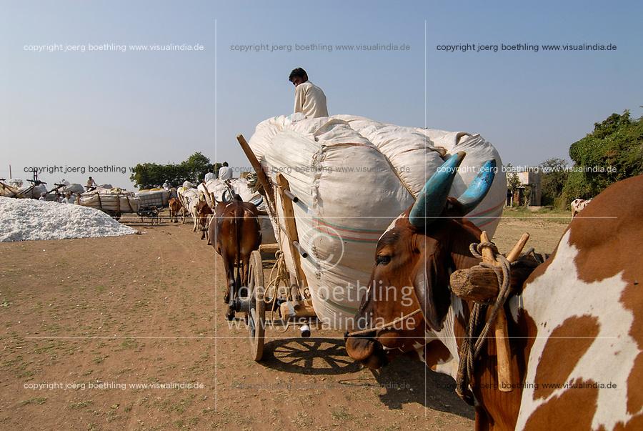 INDIA Madhya Pradesh , cotton farming, farmer transport cotton harvest by bullock cart  after auction to ginning factory / INDIEN Madhya Pradesh , Baumwollanbau, Farmer transportieren Baumwollernte mit Ochsengespann nach Auktion zu einer Entkernungsfabrik