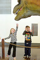 NWA Democrat-Gazette/BEN GOFF @NWABENGOFF<br /> Marlee Williams (left), 6, tries to touch an animatronic Tyrannosaurus rex as Landon Snopko, 8, does a dinosaur impression on Monday Nov. 23, 2015 while visiting the new Dinosaurs: Fossils Exposed exhibit at the Scott Family Amazeum in Bentonville. The two were visiting the exhibit, which runs through March 2016, with a group from the First Christian Church of Bentonville Character Kids program.
