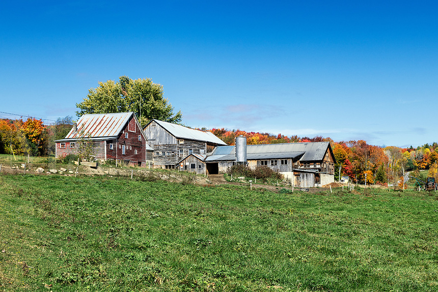 Rustic autumn farm, Stowe, Vermont, USA.