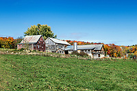 Rustic autumn farm, Stowe, Vermont, USA.