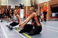 ASSEN - Volleybal, Internationaal zitvolleybal toernooi, Nederland - Rusland, 01-07-2017,  Ellen Deelen