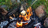 Roasting a marshmallow over a summer campfire.