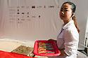 Hostess holds the tray with scissors to cut the ribbon at the ceremony of start of works of the Chinese Pavilion at Expo 2015, Rho-Pero, September 4, 2014. &copy; Carlo Cerchioli<br /> <br /> Hostess tiene il vassoio con le forbici per tagliare il nastro alla cerimonia di inizio dei lavori del padiglione cinese a Expo 2015, Rho-Pero, 4 settembre 2014.