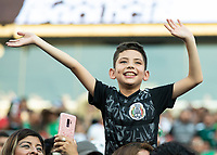 CHARLOTTE, NC - JUNE 23: Mexico fan during a game between Mexico and Martinique at Bank of America Stadium on June 23, 2019 in Charlotte, North Carolina.