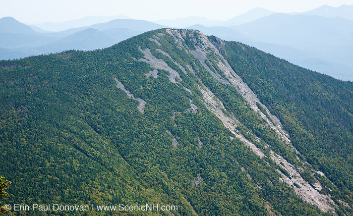 The rocky summit of Mount Flume during the summer months from Mount Liberty in the White Mountains of New Hampshire. This an example of a Montane landslide barren and thicket community.