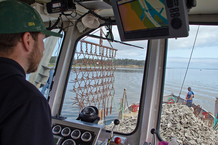 Washington Coast, Ocean Park, Nahcotta, Coast Seafoods, Mike Lambert, captain, oyster scow, Nahcotta Express, commercial oyster farming, Willapa Bay, Pacific County, Southwest Washington, Washington State, Pacific Northwest, USA,