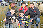 BABY RAM: Shane and Cian O'Donoghue (caherciveen), Back l-r: Gene Cronin (Killarney), Bernadette O'callaghan (Blennerville) and Patrick O'Donoghue (Caherciveen) with their baby ram as he was 1st in his catergory at the Kingdom County Fair, at Ballybeggan Racecourse, on Sunday.
