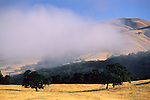 Coastal fog and hills, Carmel Valley, Monterey County, California