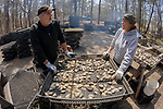 James Ward & Lynne Fox Sorting Oysters