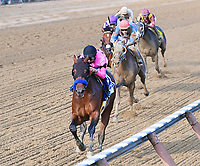 West Coast (no. 3), ridden by Mike Smith and trained by Bob Baffert, wins the 148th running of the grade 1 Travers Stakes for three year olds on August 26, 2017 at Saratoga Race Course in Saratoga Springs, New York. (Bob Mayberger/Eclipse Sportswire)