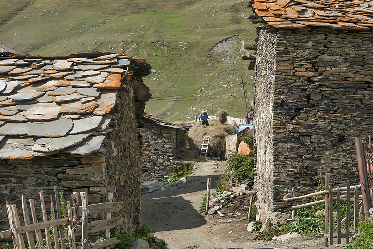 In this Ushguli Tower Village, at an elevation of 6844 ft- one of the highest  inhabited settlements in Europe, the winters are long and severe.  This farmer is wisely storing away enough hay to feed his livestock through the winter.