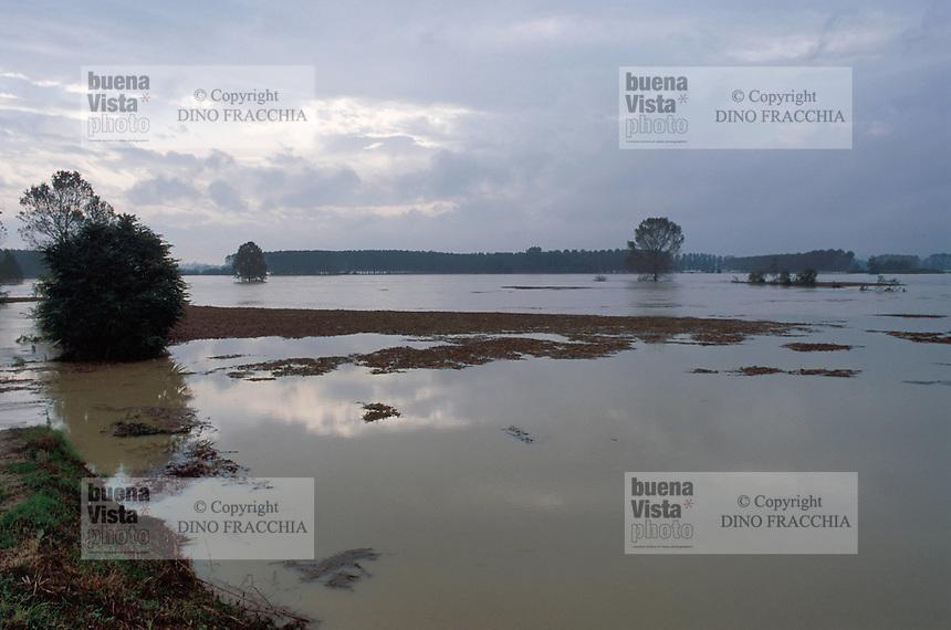 - flood of the Po river in Pavia province....- piena del fiume Po in provincia di Pavia