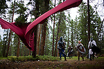 "Brothers Arden, Ethan, and Evan Sellers (Evan-Gold Knight, Arden-Blue Knight, Ethan-Black Knight) and Jordan Lamb, of Utah, at the NERO empire LARP event outside Conifer, Colo...The Nero Empire Live Action Role Players (LARP) gather for a three day LARPING event in forest land outside of Conifer, Colo.  LARPING is a scenario-based event where participants create characters for themselves and participate in play based around that theme.  Characters form alliances, fight for common goals, and can be ""killed."""