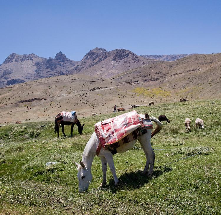 The High Atlas Mountains of Morocco