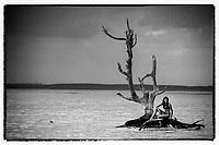 Iles Bahamas /Ile d'Eleuthera/Harbour Island/Dunmore Town: la plage et Fashion Tree - arbre mort célébré par de nombreux photographes de mode [Non destiné à un usage publicitaire - Not intended for an advertising use] [ // Bahamas Islands / Eleuthera Island / Harbor Island / Dunmore Town: Beach and Fashion Tree - Dead Tree Celebrated by Many Fashion Photographers [Not for Advertising Purposes - Not intended for an advertising use]