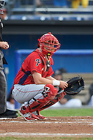 Williamsport Crosscutters catcher Austin Bossart (47) looks to the dugout during a game against the Batavia Muckdogs on August 29, 2015 at Dwyer Stadium in Batavia, New York.  Williamsport defeated Batavia 7-3.  (Mike Janes/Four Seam Images)