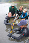 Earthwatch Team Measuring Shovelnose Guitarfish