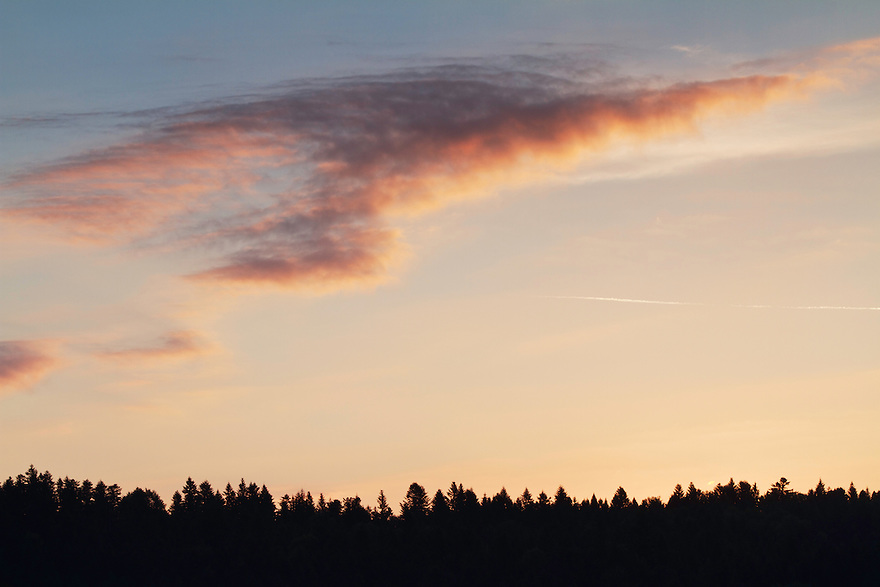 Silhouetted tree tops and clouds at a September sunrise close to the village of Lutowiska, Bieszczady National Park area, Poland.