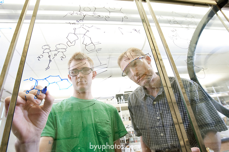 "Dr. Steven Castle and student Spencer Jones have developed. the synthetic mirror-image of a molecule derived from the. ""Stephania japonica"", or Japanese tape vine, that has .a molecular structure that closely resembles that of the .addictive painkiller morphine...August 9, 2006..Photography by Mark A. Philbrick..Copyright BYU Photo 2006 .All Rights Reserved .photo@byu.edu  (801)422-7322"