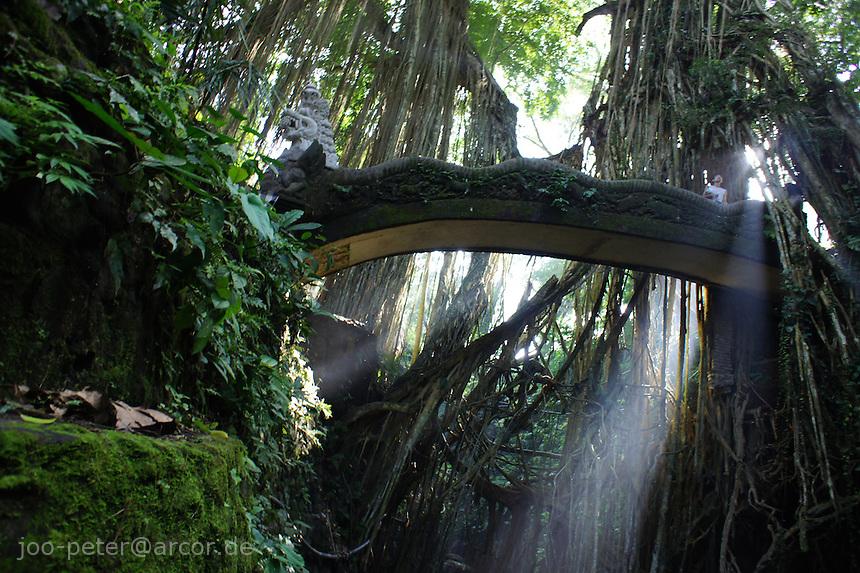 bridge in  holy monkey forest, Ubud  in early morning sunlight ,  Bali, archipelago Indonesia, 2010
