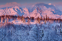 Winter landscape of clearing storm over Tokosha Mountains of the Alaska Range and snow-covered forest. Southcentral, Alaska    <br /> <br /> Photo by Jeff Schultz/SchultzPhoto.com  (C) 2016  ALL RIGHTS RESVERVED
