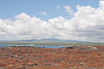 South Plazas Island, Galapagos, Ecuador; view of Santa Cruz Island from the top of South Plazas Island covered in orange succulents , Copyright © Matthew Meier, matthewmeierphoto.com All Rights Reserved
