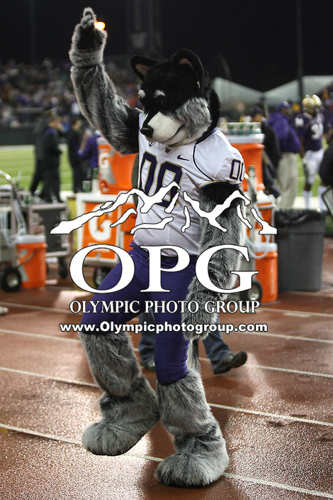 Oct 16, 20010:  Harry the Washington mascot got the crowed a jumping during the game against Oregon State.  Washington defeated Oregon State 35-35 in double overtime at Husky Stadium in Seattle, Washington...