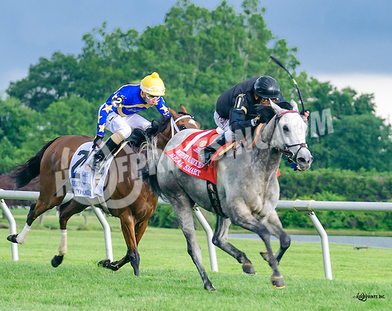 Real Smart winning The Robert G. Dick Memorial Stakes (gr 3) at Delaware Park on 7/9/16 beneath stormy skies