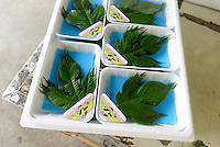 A box of Irodori paper mulberry leaves at the agricultural cooperative, Kamikatsu, Katsuura, Tokushima Prefecture, Japan, July 7, 2014. The Irodori Project is based in the mountain town of Kamikatsu, Tokushima Prefecture. Farmers - many of them elderly - grow leaves and flowers to use to decorate Japanese food in restaurants and hotels across the nation.