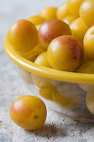 Europe/France/Lorraine/54/Meurthe-et-Moselle : Mirabelles de Lorraine // France, Meurthe et Moselle, Lorraine mirabelle plums